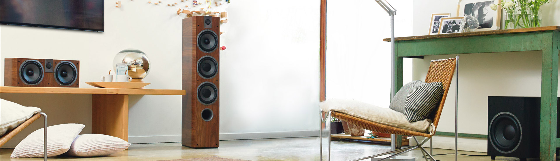 Ash Forest Hi-Fi Store in Kingston, Ontario - Speakers